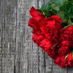 Red Rose 3923287 1920